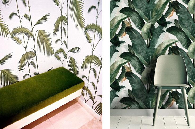 Palm Wallpaper copy