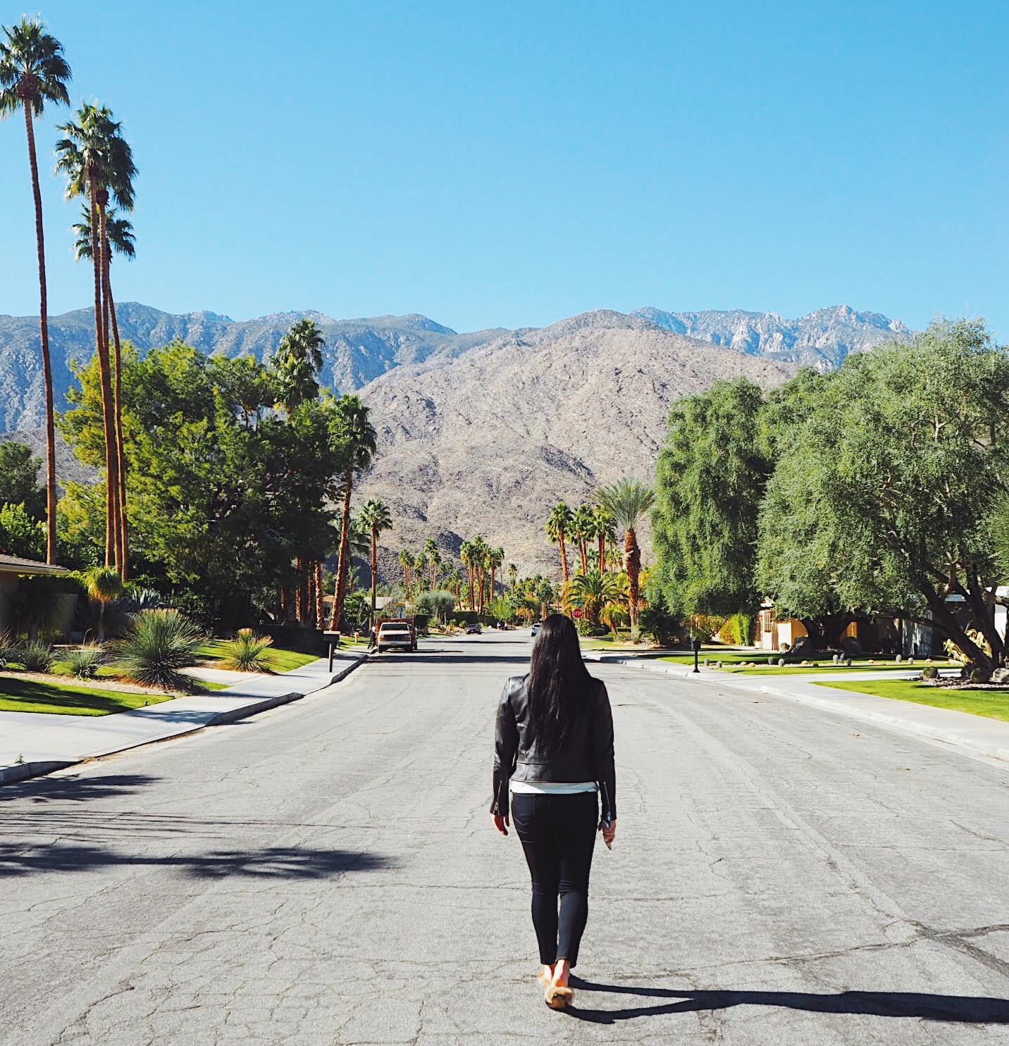 Palm Springs Flat 15 Blog